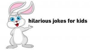 50+ Funny rabbit jokes for kids