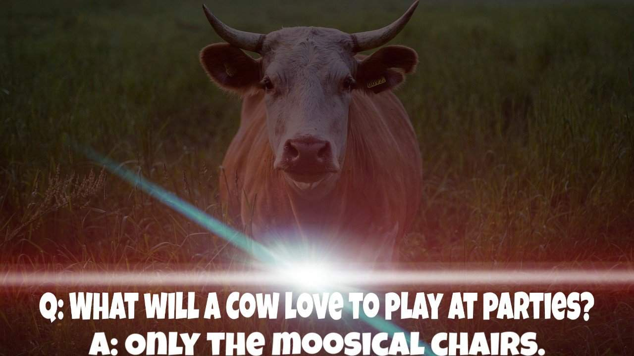Top 100 Cow Jokes For Kids 2