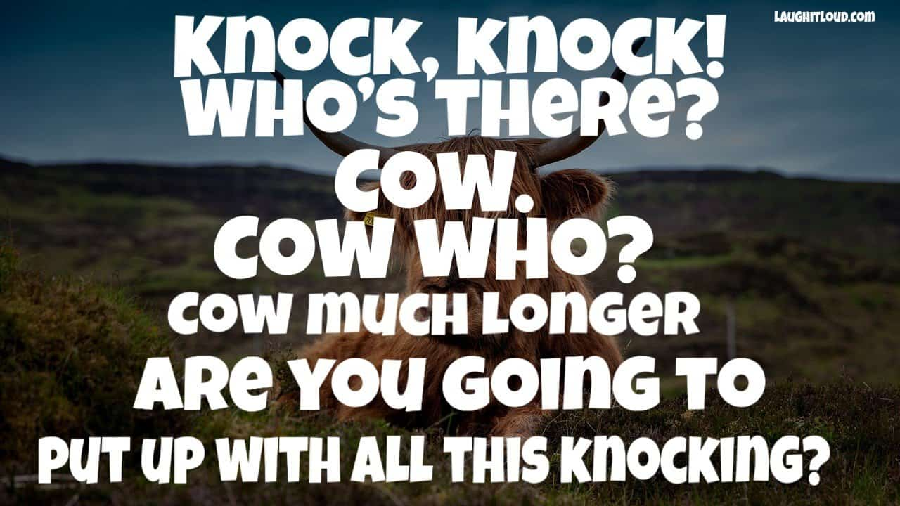 Top 100 Cow Jokes For Kids 1