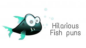 Read more about the article 94 Fish Puns That'll Make You Laugh So Hard
