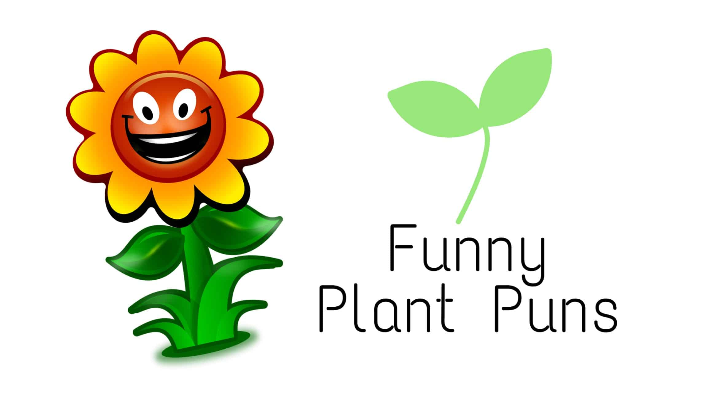 75 Hilarious Plant puns To Brighten Your Day