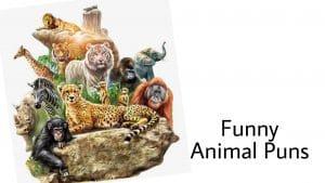 67 Animal Puns That Will Make You Laugh Like Hyena