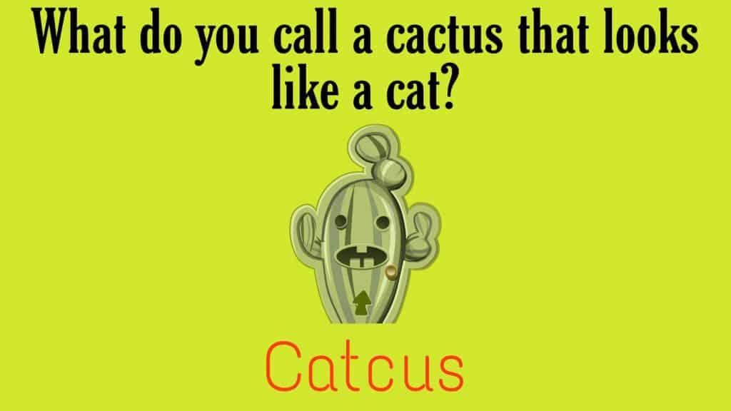 hilarious plant puns