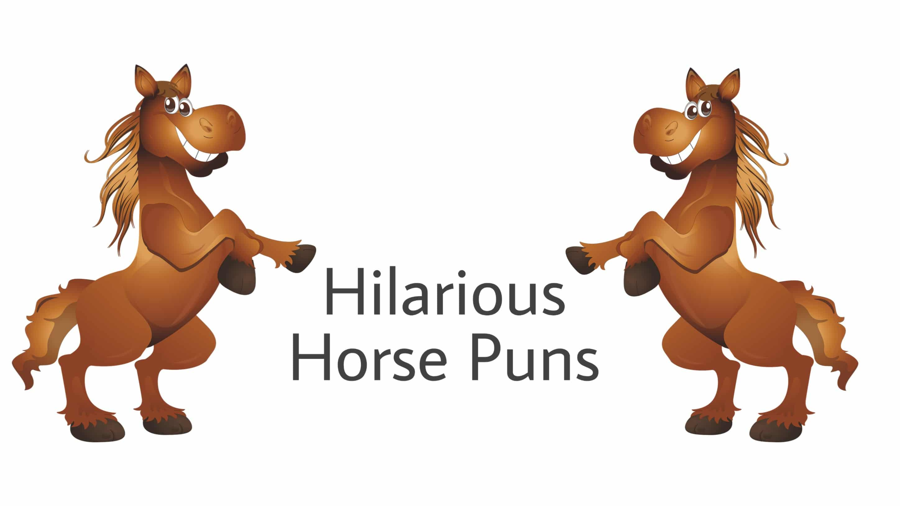 105 Horse puns You Can't Help But Laugh At