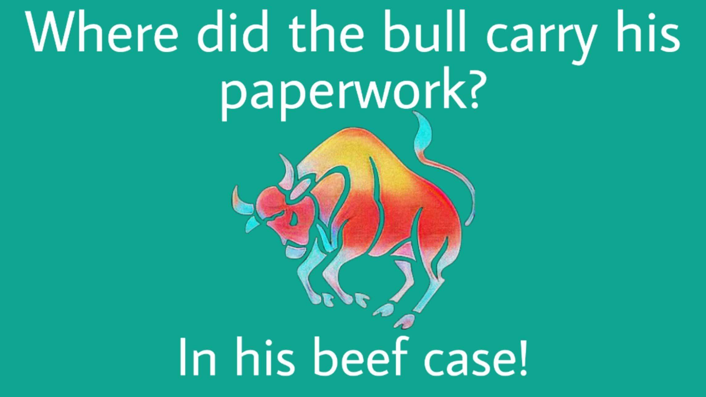 Puns about cows