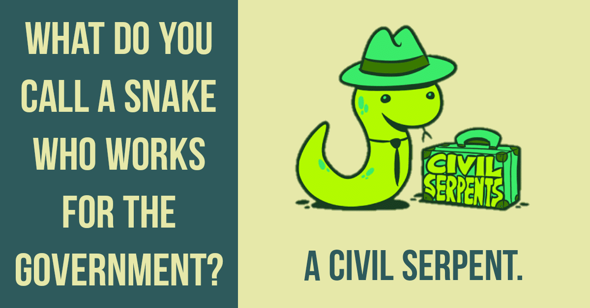 100+ Snake Puns you shouldn't Hiss Out 1