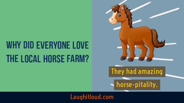 Horse puns