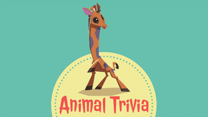 animal quiz questions