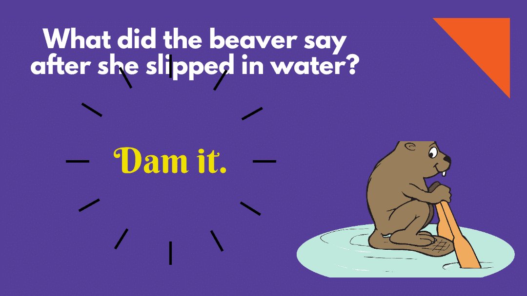60 Water Puns That Will Have You Drowning In Laughter 1