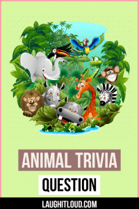 Read more about the article 105+ Animal Trivia Questions With Answers