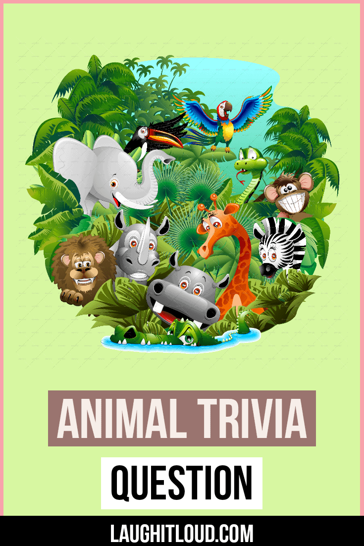 105 Animal Trivia Questions With Answers Laughitloud