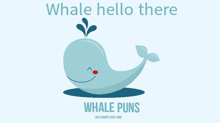 40 Best Whale Puns