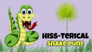 100+ Snake Puns you shouldn't Hiss Out