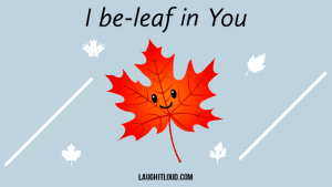 Read more about the article 45+ Leaf Puns That Are Fallen For you
