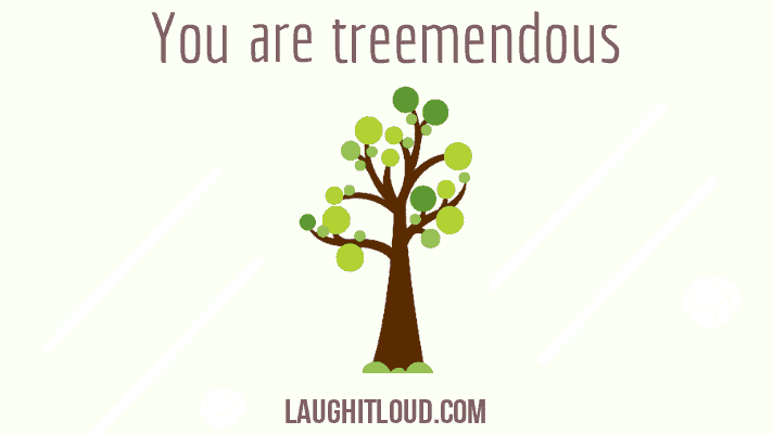 You are currently viewing 50 Tree Puns That Will Make You Laugh